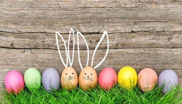 depositphotos_140311874-stock-photo-easter-eggs-cute-bunny-funny.jpg